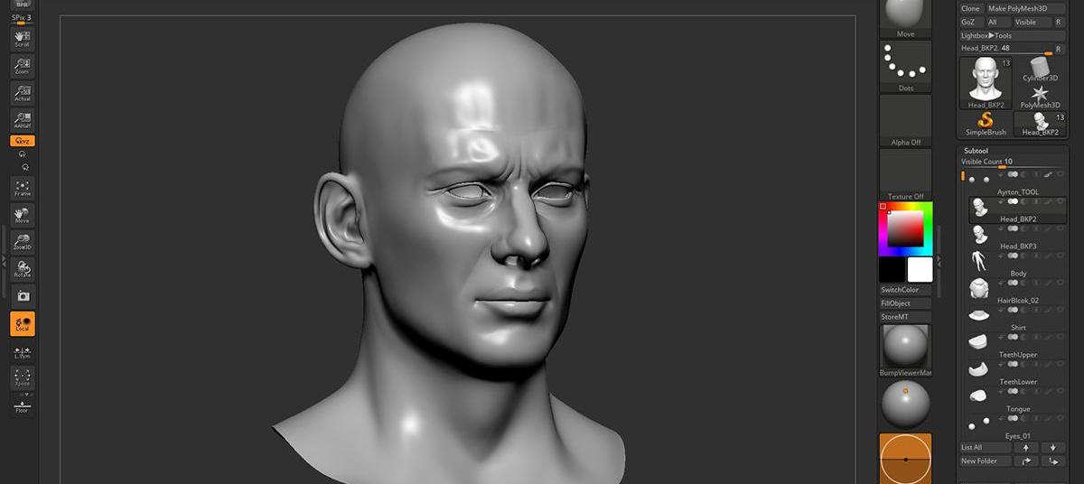 realistic portrait form
