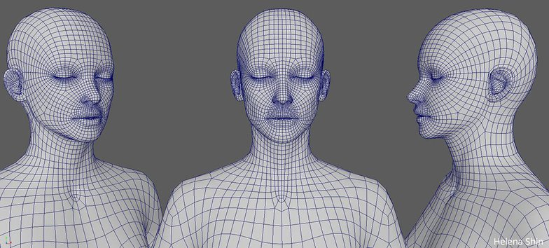 face and upper body modeling