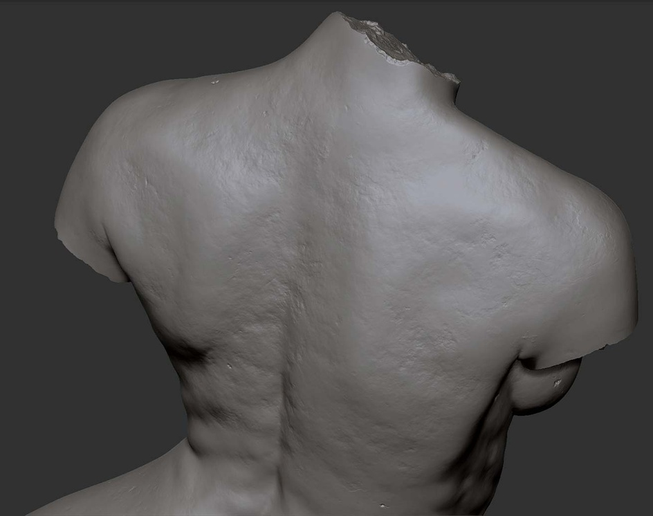 Torso anatomy studyby Marcos Falcao