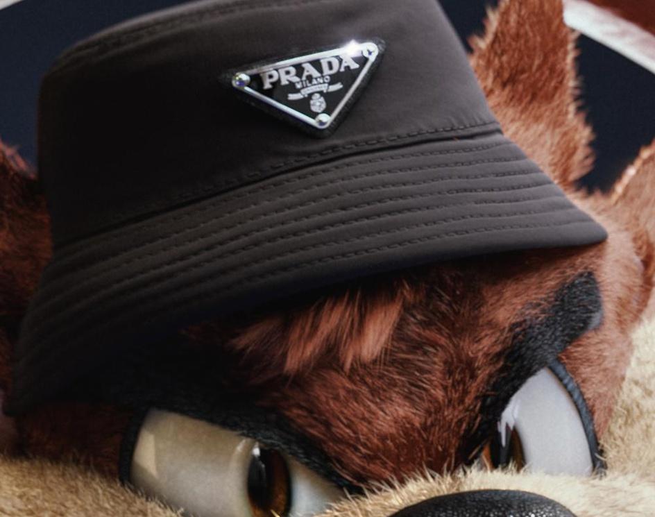 The Tasmanian Devil Wears Pradaby Gal Yosef