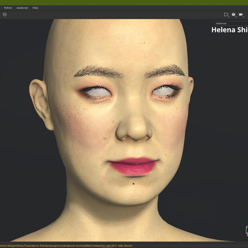 face material view substance painters textures model