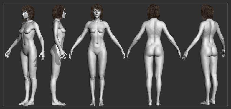 3d sculpting female anatomy