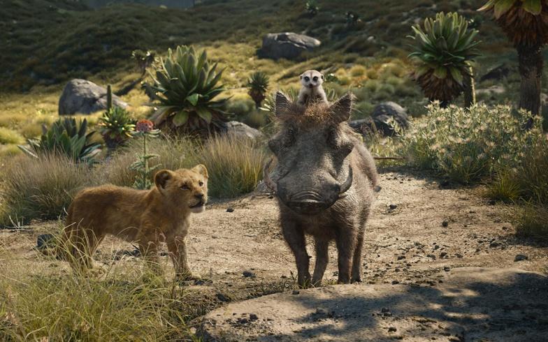 the lion king timon pumbaa