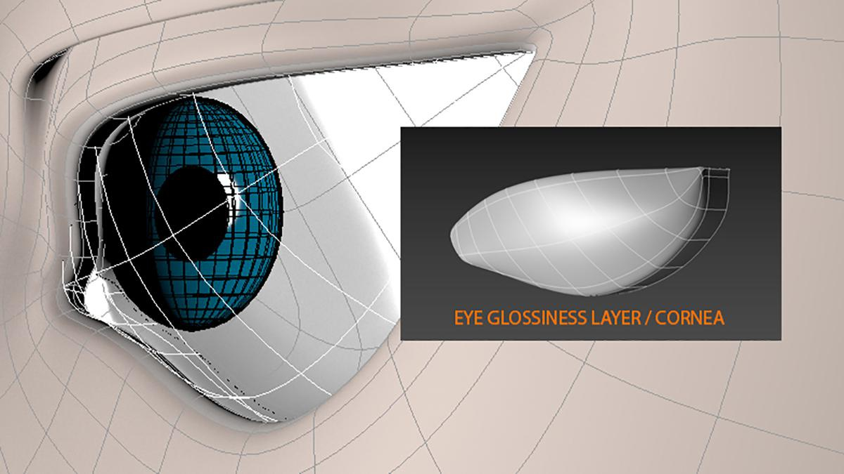eye layering and shapes 3d model