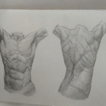 sketching illustration pencil drawing anatomy 2d