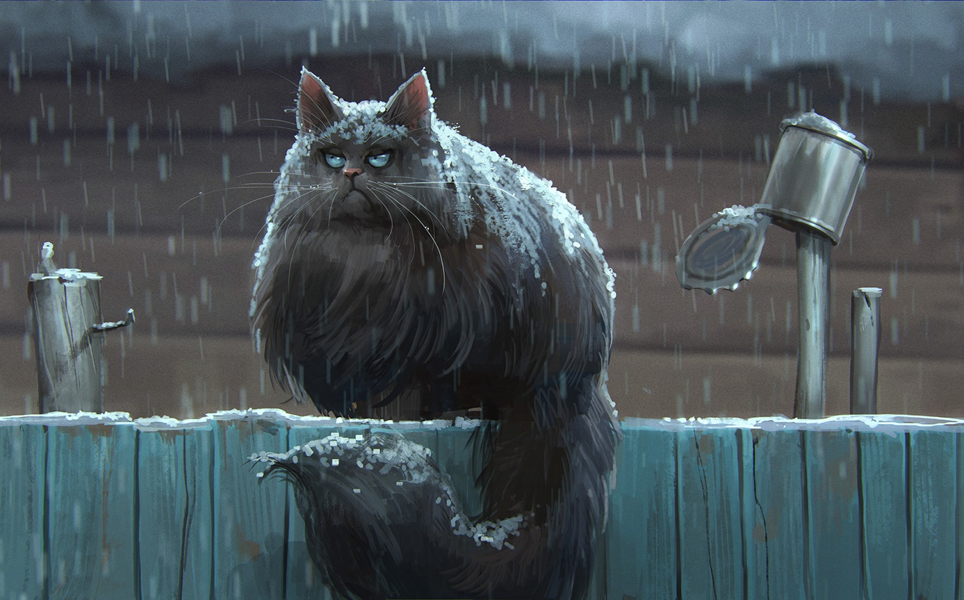 cat, fence, snow, stylized, grumpy, fur, can