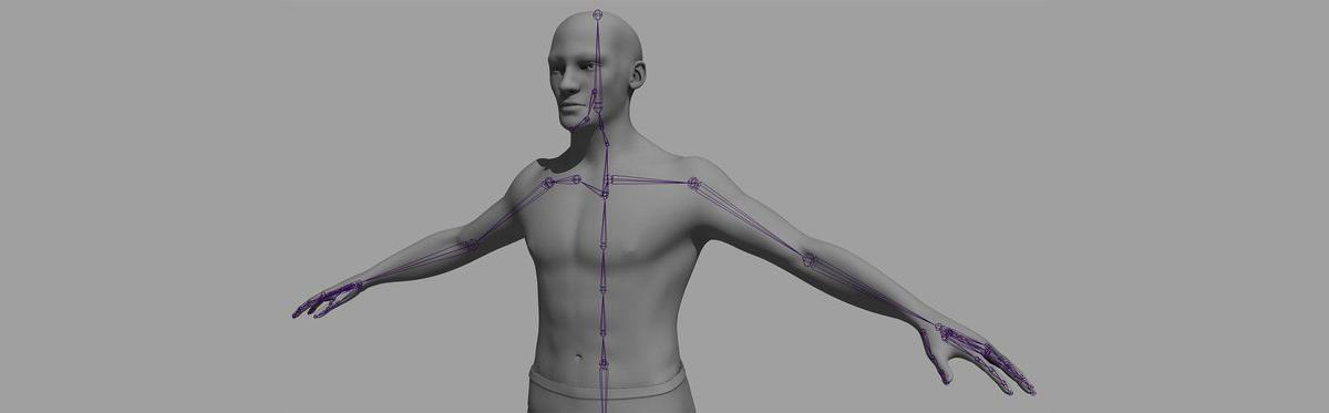3d male model rigging rendering Computer Animation and Visual Effects Trainer and Consultant