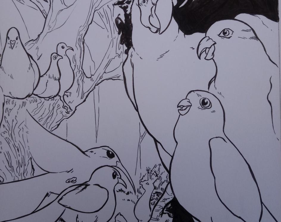 What if birds were the dominant species?by Arturo Mora Contreras