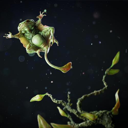 squirrel frog action pose 3d model