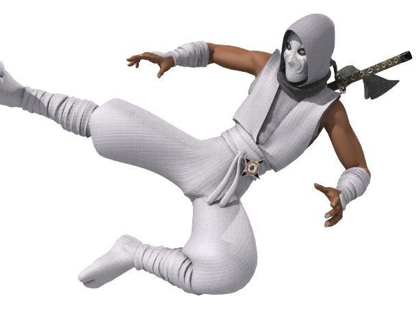 Ninja 2by newhere