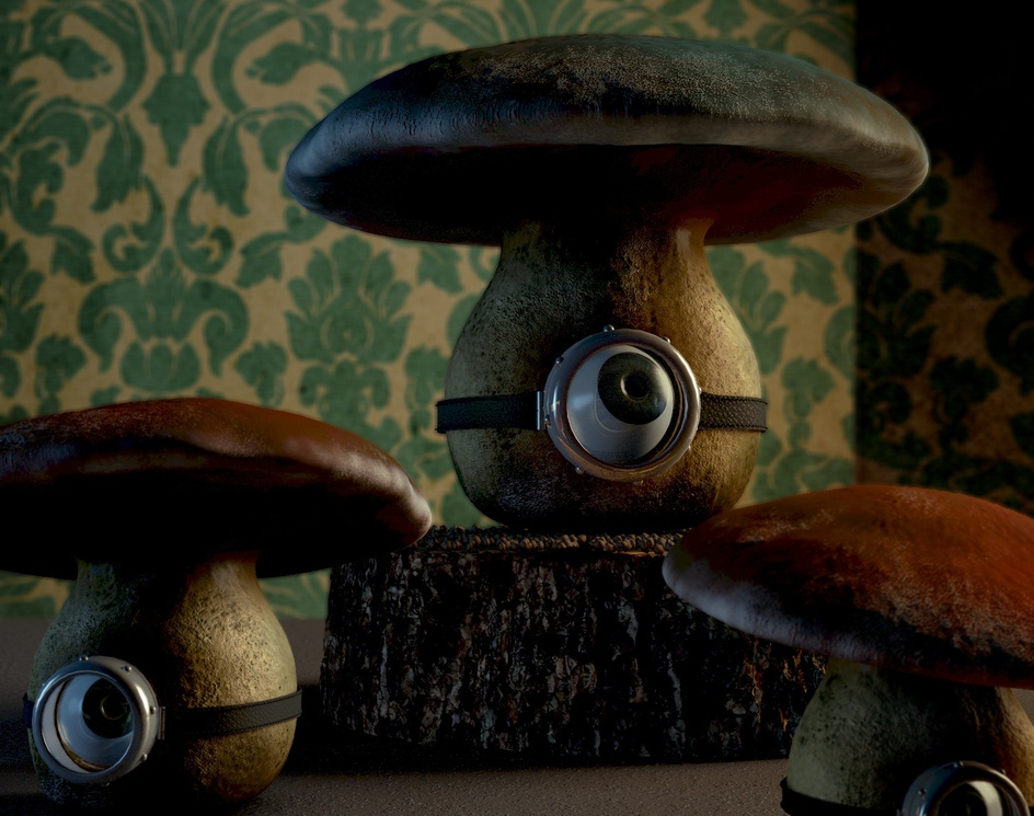 holland mushroomsby Daniele Boldi Cotti