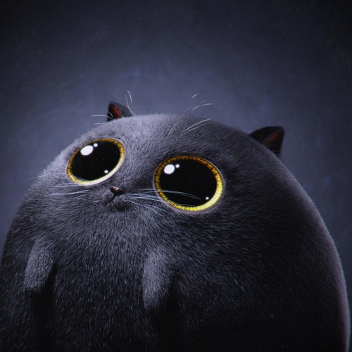 cute kitty cat character design