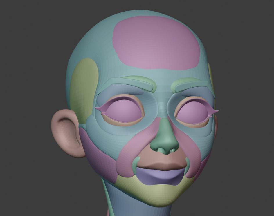 Stylized Head *Anatomy Blockoutby George Zaky
