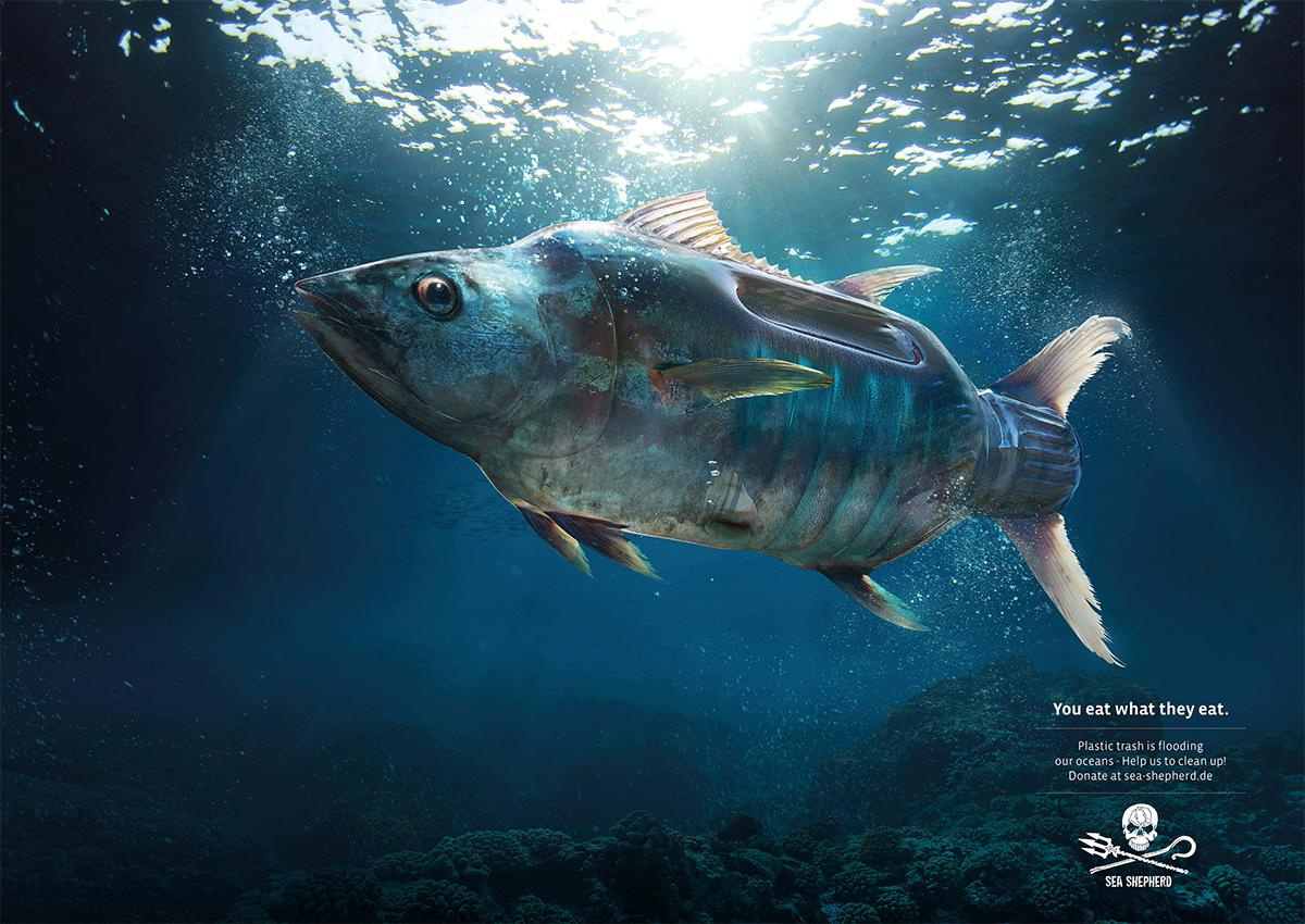 fish plastic poster advertisement