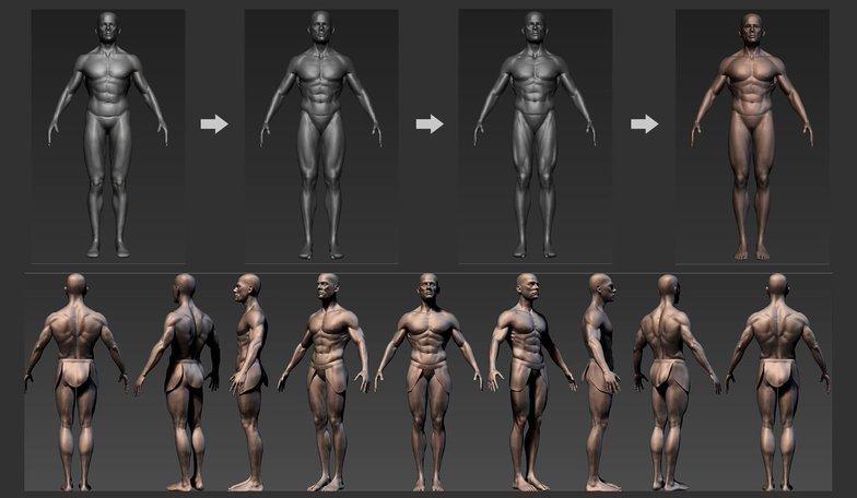 body poss muscular male