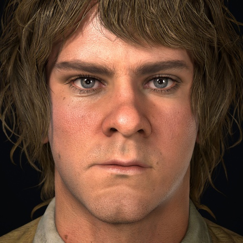 lord of the rings merry portrait 3d