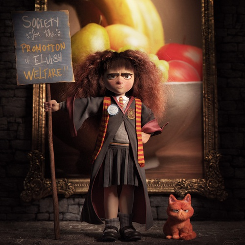 harry potter hermione granger 3d