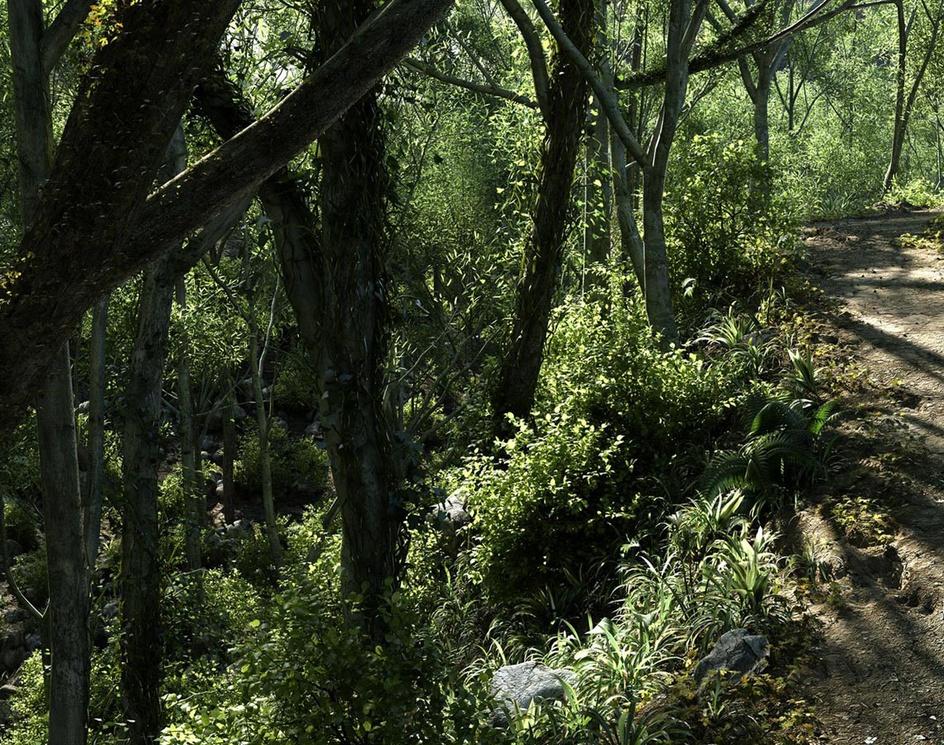 Forest Pathby A_Alvarez