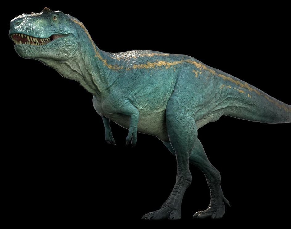 Albertosaurus. Dino Danaby Vlad Konstantinov