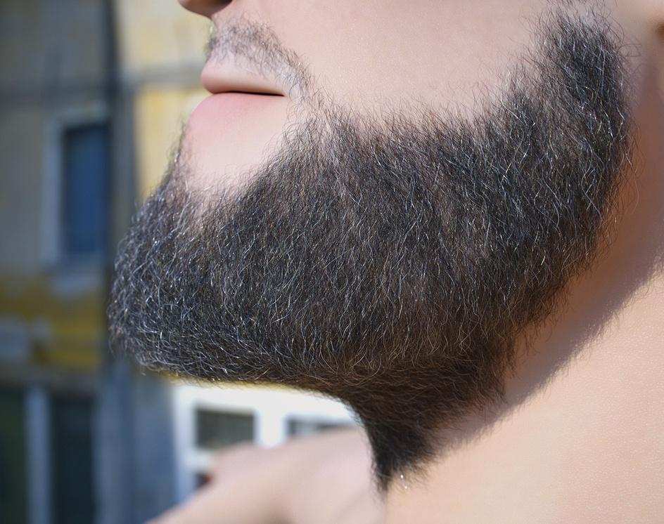 Ornatrix grooming for Josephby Andrew Krivulya