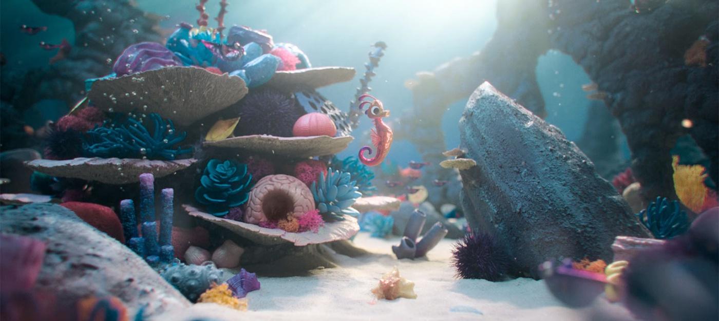 seahorse coral reef ocean