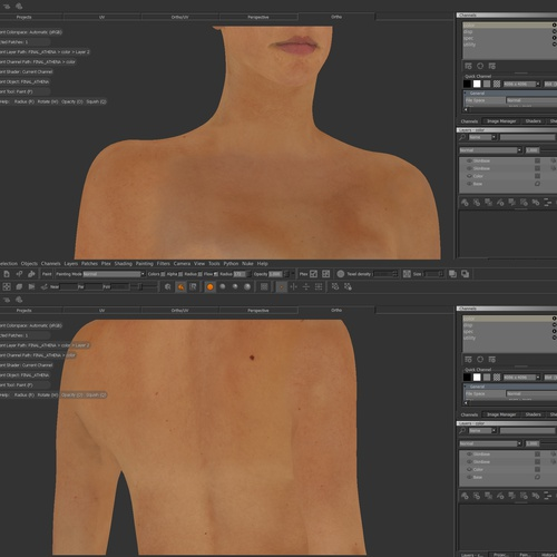 body texturing detailing 3d model
