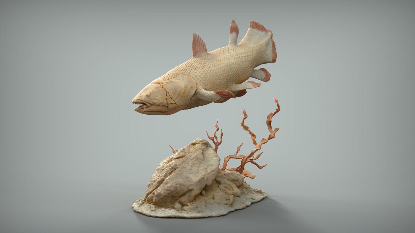 fish fossil rock sculpt creature design model 3d