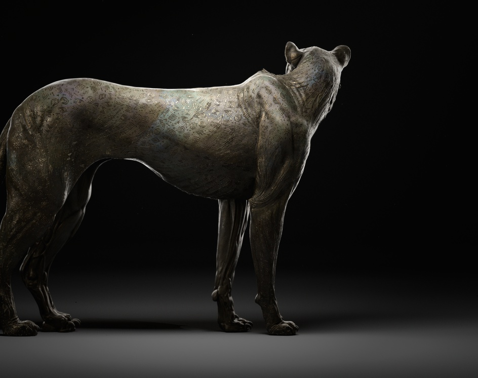 Cheetah Anatomy Studyby Esteban Ariza