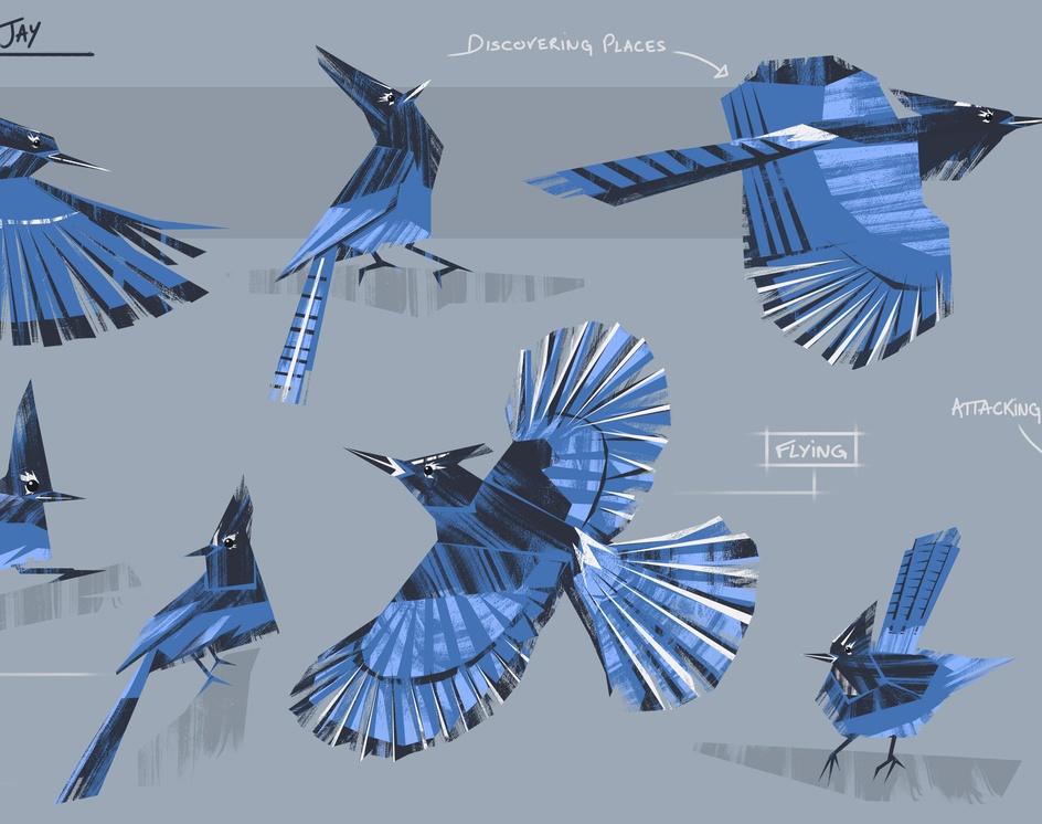 Western Blue Jay Birdby Quentin Marsollier