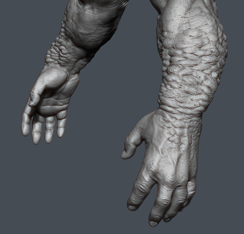 Creature hands study