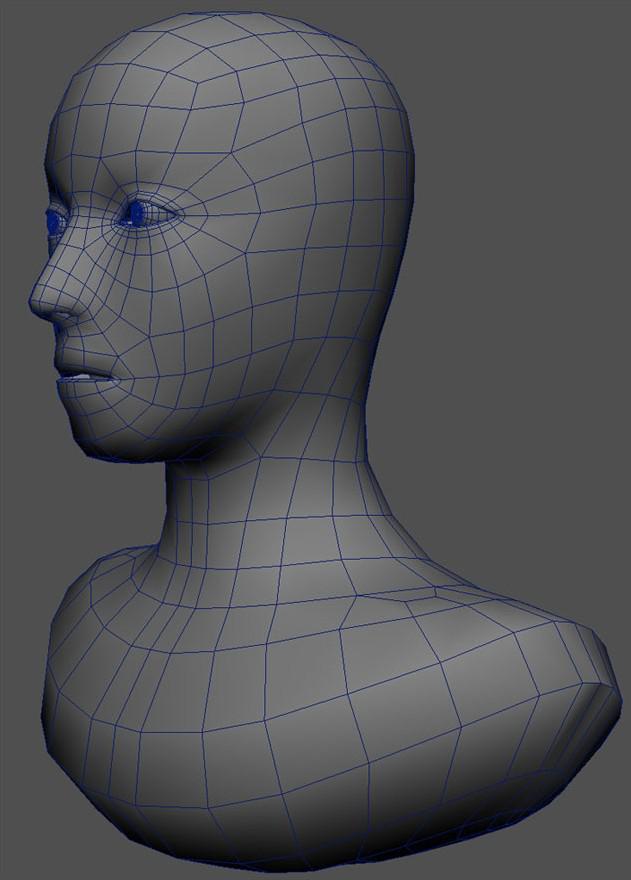 Fig. 04_human_head_model
