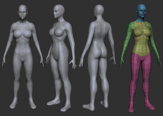 Fig. 03_female_body_model