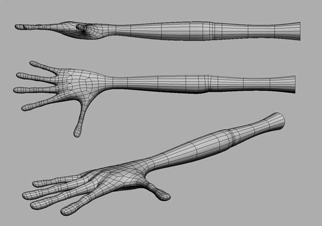Fig. 04_hands_arms