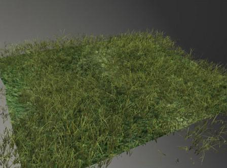 Realistic Grass in Maya · 3dtotal · Learn | Create | Share