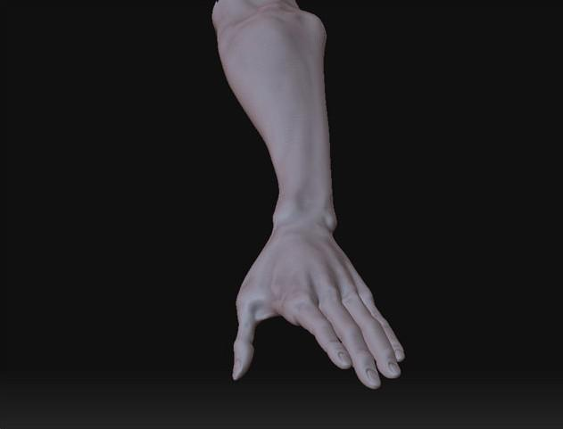 Fig. 15_hand_model_mesh