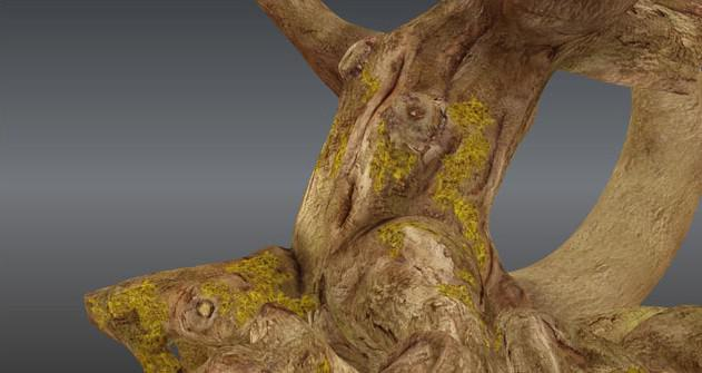 Fig. 25_tree_bark_texture_wraping