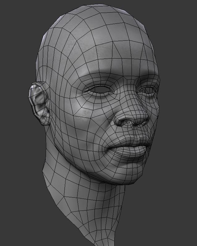 automob 3d anatomy tutorial - 638×798