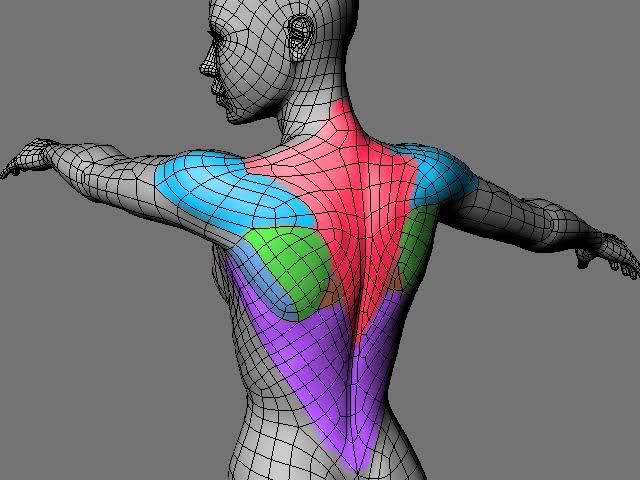 Fig.02 - Anatomy edge flow: <a href=