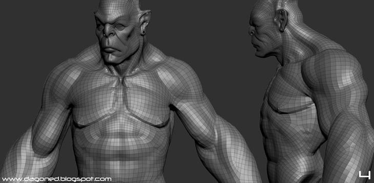 Fig.03 - Muscular anatomy edge flow: <a href=