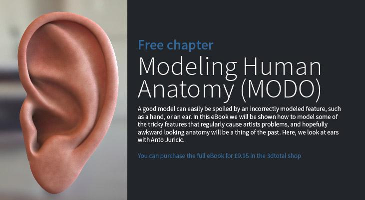Modeling Human Anatomy (MODO): Chapter 1 · 3dtotal · Learn
