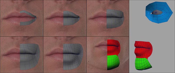 Using the same methodology for the mouth and chin portion