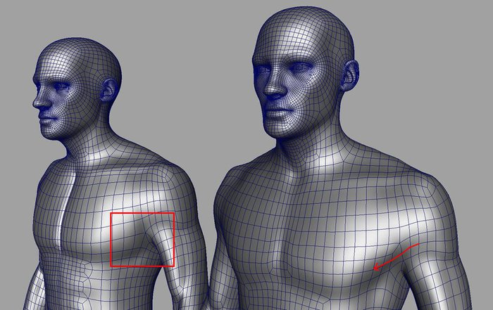 Updating some of the topology around the chest region