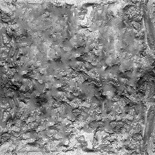 The bump map – just a black-and-white version of the texture. Best results can be achieved using a program like<a href=