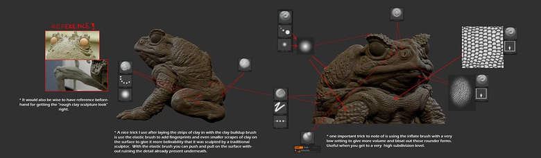 Diagram showing all the brushes I used in creating the detail on the toad