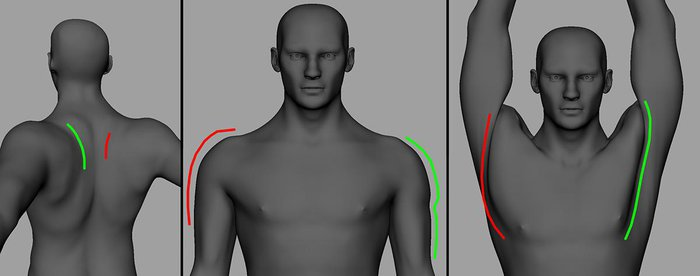 Correcting the area of the shoulders and the back with multiple corrective blend shapes