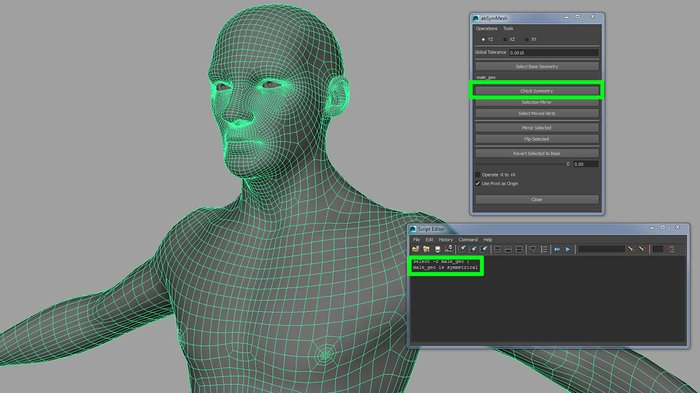 Using the abSymMesh tool to check the symmetry of the model