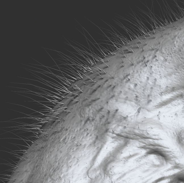 Creating the creature's hair using Fibermesh