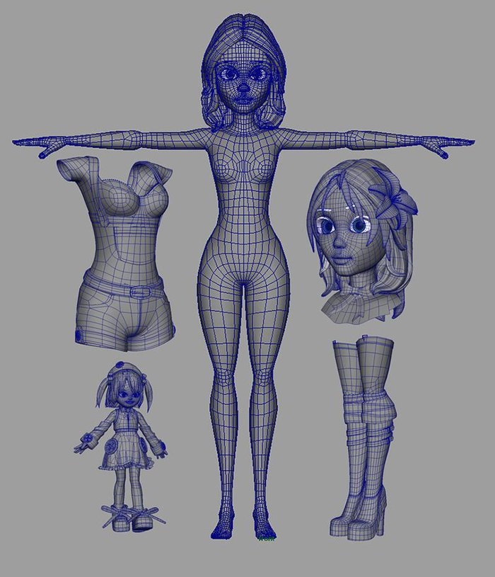 The final topology for the mesh