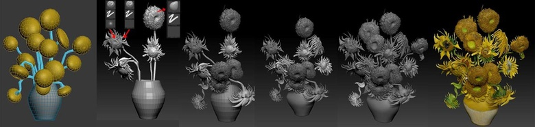Modeling the sunflower