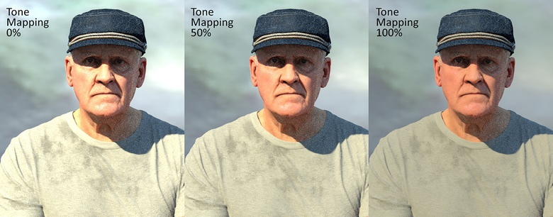 Tone Mapping is another cool tool in MODO's rendering arsenal